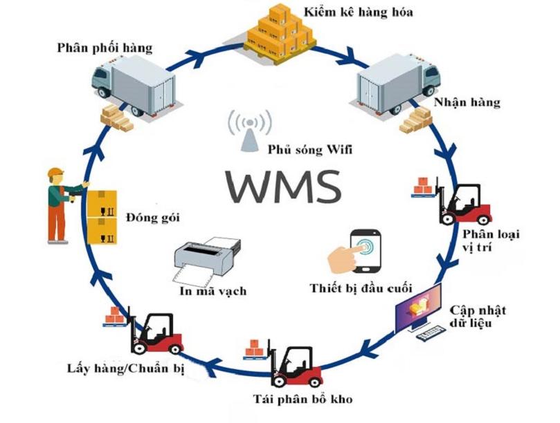 Hiểu đúng ý nghĩa của WMS là gì?